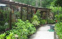 viveros y jardines en vigo