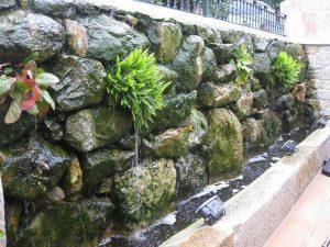 decoración de jardines - mantenimiento de jardines