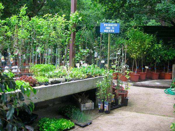 servicios de jardinería en vigo