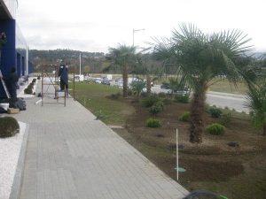 jardines y viveros en Vigo